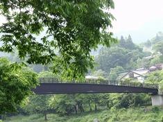 220611-45 橋・御岳渓谷.jpg