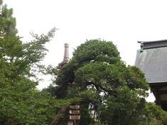 220622-18 釈迦寺.jpg