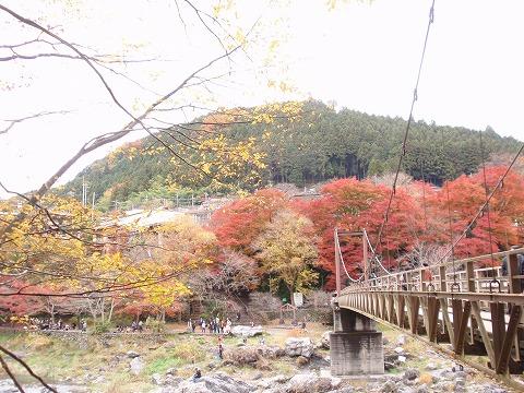 221123-112 御岳渓谷.jpg