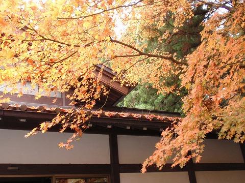 221123-125 玉堂美術館.jpg