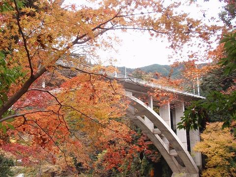 221123-135 御岳橋.jpg