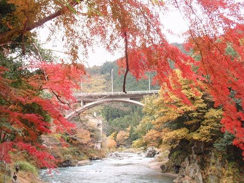 221123-142 御岳渓谷・御岳橋.jpg
