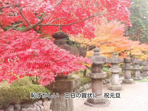 221125-30s 能仁寺.jpg