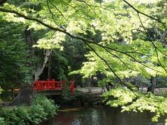 230915-74 大宮氷川神社.jpg