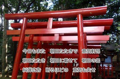 230915-86s 大宮氷川.jpg