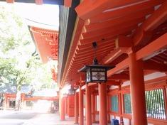 231006-53 大宮氷川神社.jpg