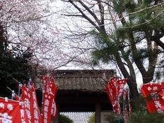 240410-47 常安寺.jpg