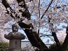 240412-24 高倉日枝神社.jpg