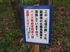 240428-34 石坂の森.jpg