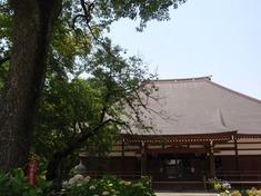 240608-206 能護寺.jpg