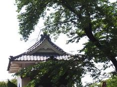 240608-213 能護寺.jpg