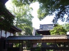 240608-249 集福寺.jpg