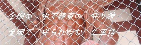 240725-19f 本門寺.JPG