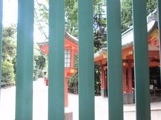 240914-17 大宮氷川神社.jpg