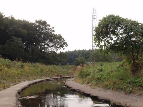 241017-09 市の川.jpg