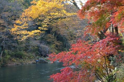 241124-051 御岳渓谷.jpg