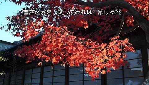 241206-260s 箭弓神社.jpg