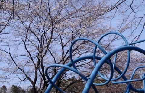 250326-03 鳩山町.JPG