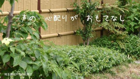 250522-98b 坂戸.jpg