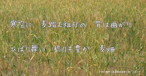 250602-07c 鶴ヶ島.jpg