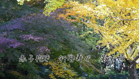 251116-162b 高坂橋.jpg