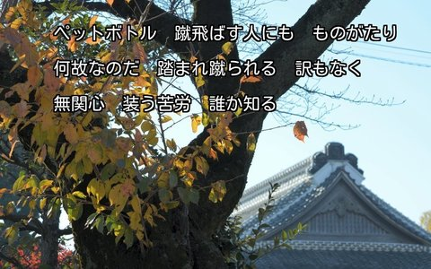251201-86s 本丸御殿.jpg