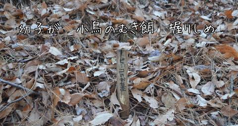 260117-73a 石坂のp森.jpg