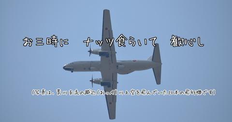 260417-455b 越辺川.jpg
