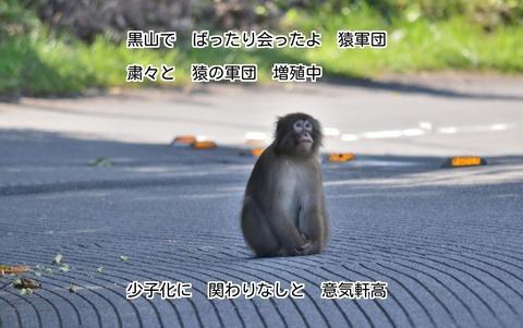 260926-122t 奈田良線.jpg