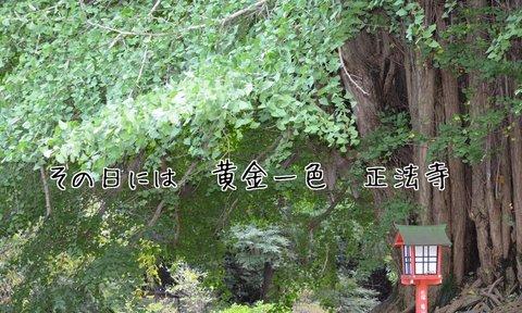 261007-151a 正法寺.jpg
