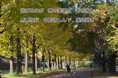 261123-371s 水上公園.jpg