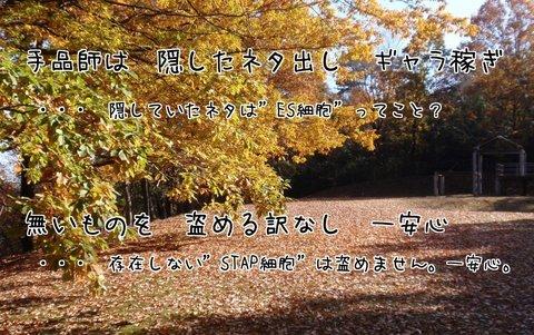 261127-22c 鳩山.jpg