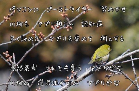 270220-141f ゲオ.jpg