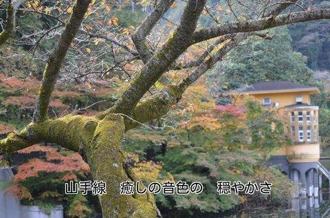 271113-109t 鎌北湖.jpg