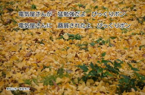 271117-202t 常安寺.jpg
