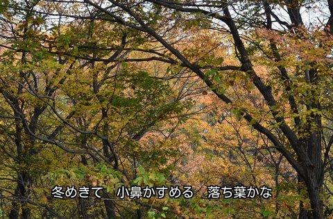 271204-016s 東京電大.jpg