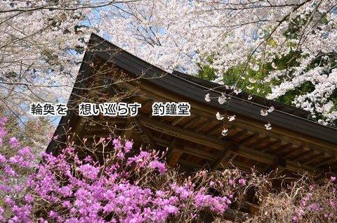 280406-555e 慈光寺.jpg