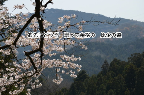 280406-627e 慈光寺.jpg