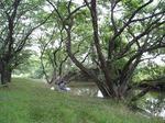 伊佐沼公園 19070115.jpg