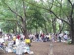伊佐沼公園 19070121.jpg