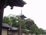 191107-11 東寺.jpg