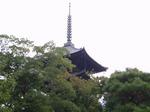 191107-12 東寺.jpg