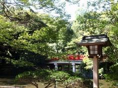 230922-87 大宮氷川神社.jpg
