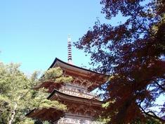 231125-120 安楽寺.jpg
