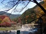231129-72 御岳渓谷.jpg