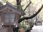 231207-39 久伊豆神社.jpg