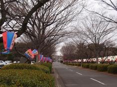 240216-24 大宮第二.jpg