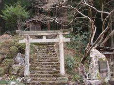 240217-03 八坂神社.jpg
